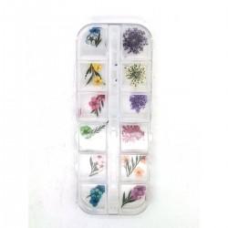 Xara Dry Flower Box No 02